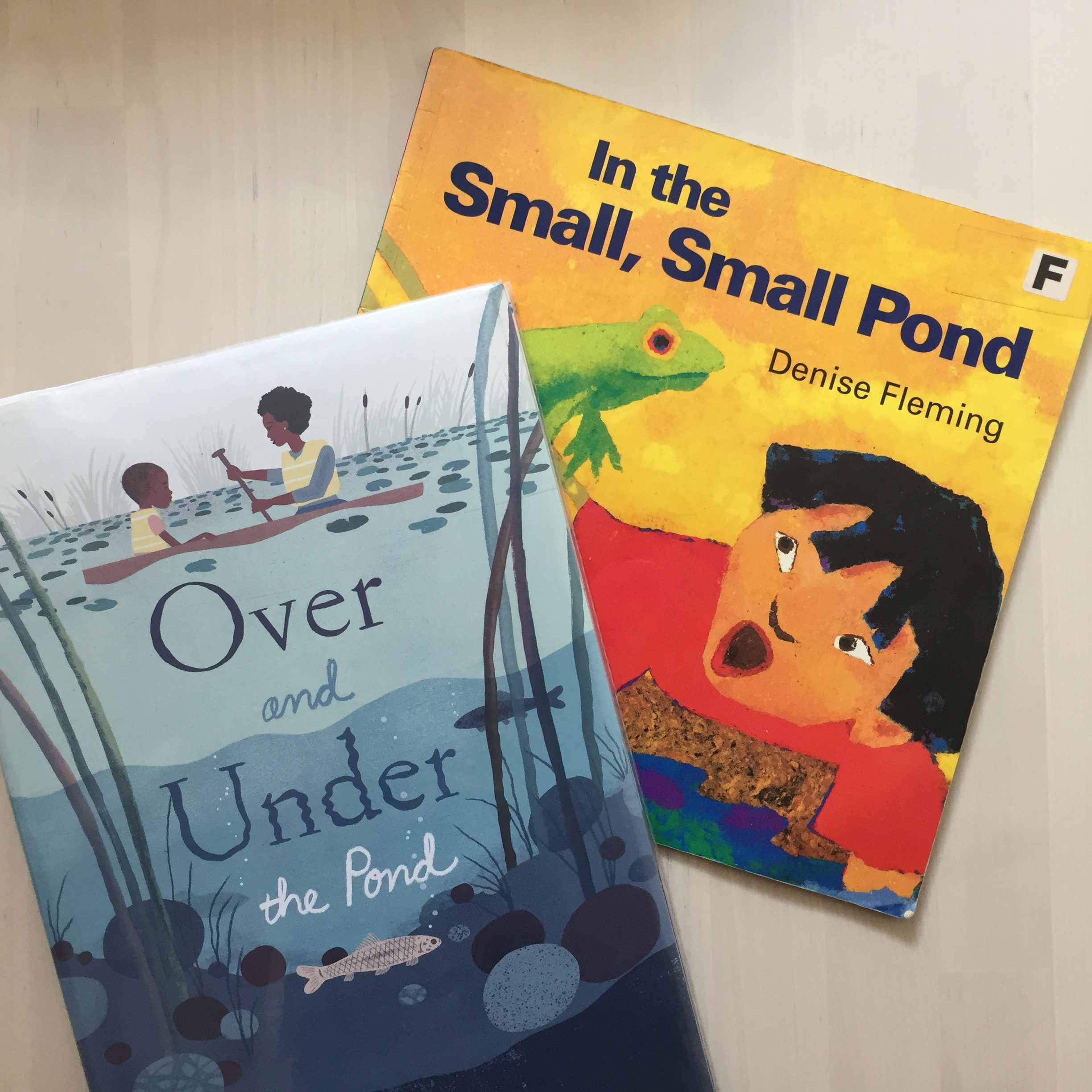 in the small pond storytime
